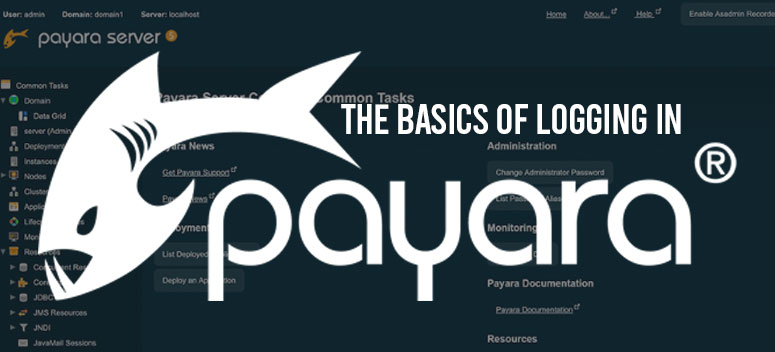 Logging in Payara Server