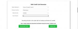 bulk credit card generator
